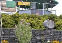 Hoffest 2017 oberer Garten